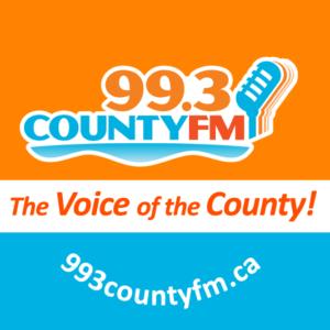 993 Logo 2